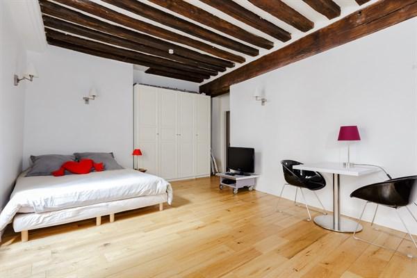 Ma tre albert spacieux studio pour 2 coeur du quartier latin maubert mutualit paris 5 me - Location meublee temporaire paris ...