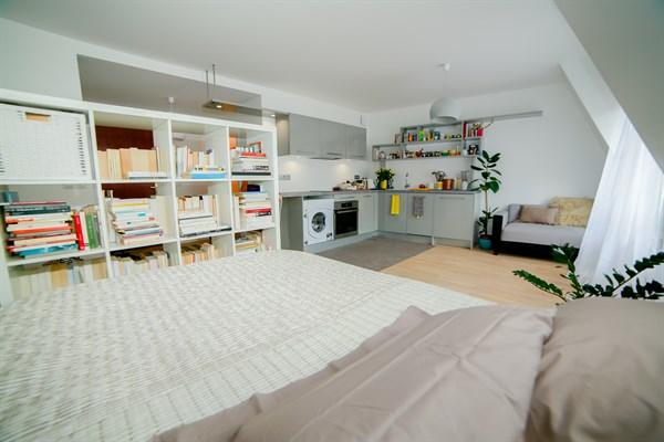 le coq fran ais grand studio alc ve moderne et refait neuf pour 2 aux portes de paris aux. Black Bedroom Furniture Sets. Home Design Ideas