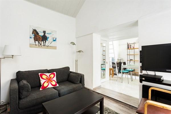 Duroc magnifico appartamento di due stanze per 4 persone for Appartamenti a parigi
